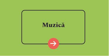 reducere muzica