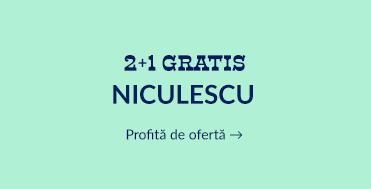 2+1 Niculescu