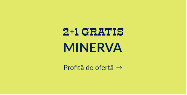 2+1 Minerva