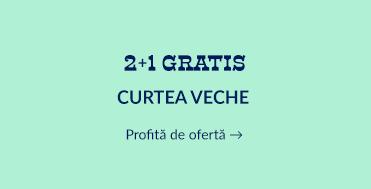 2+1 Curtea Veche