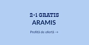 2+1 Aramis