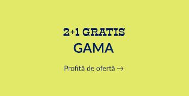 2+1 Gama