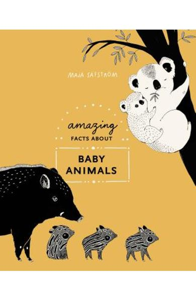 Amazing Facts about Baby Animals: An Illustrated Compendium - Maja S�fstr�m