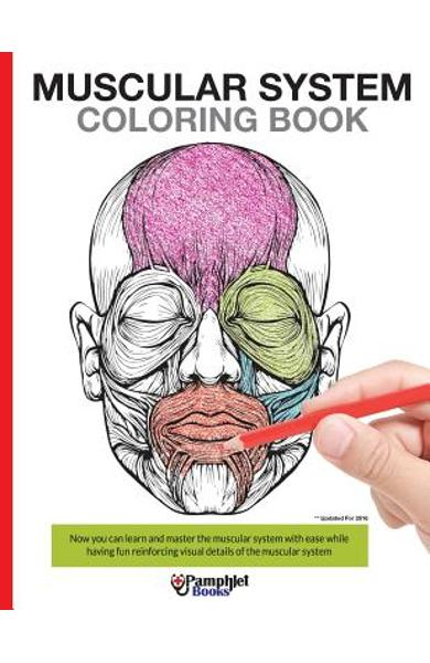 Muscular System Coloring Book: Now you can learn and master the muscular system with ease while having fun - Pamphlet Books