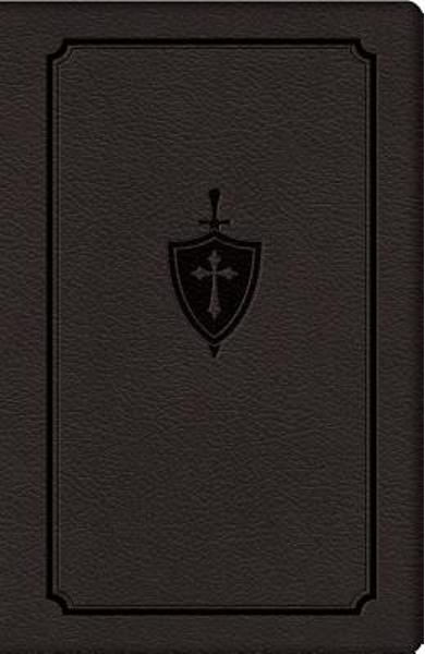 Manual for Conquering Deadly Sin - Dennis Kolinski S. J. C.