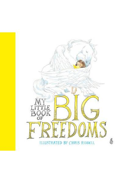 My Little Book of Big Freedoms - Chris Riddell
