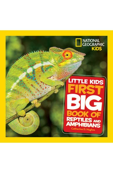 Little Kids First Big Book of Reptiles and Amphibians - Catherine D. Hughes