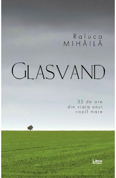 eBook Glasvand - Mihaila Raluca