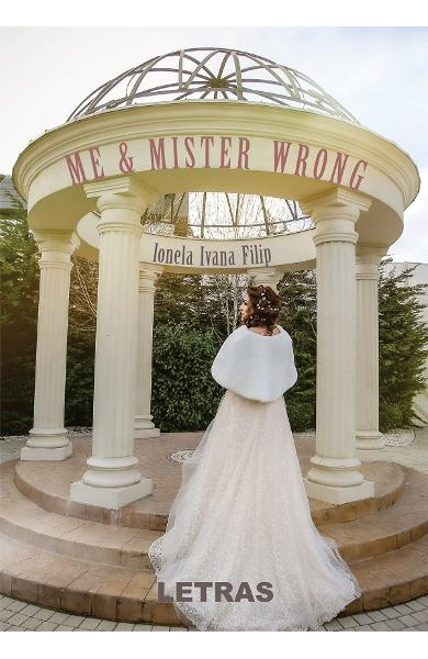 Me and Mister Wrong - Ionela Ivana Filip