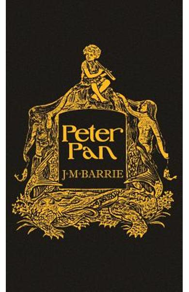 Peter Pan: With the Original 1911 Illustrations - James Matthew Barrie