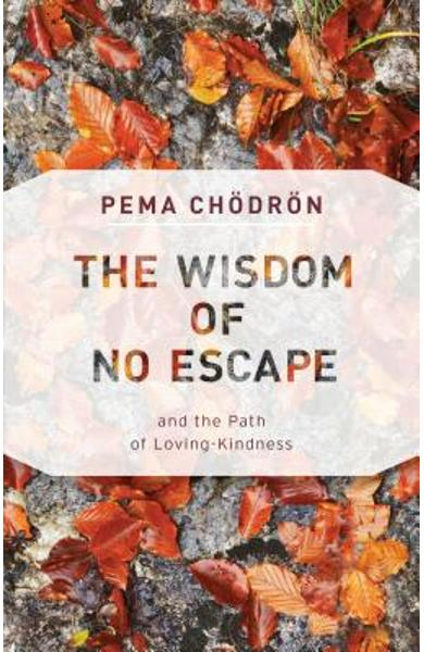 The Wisdom of No Escape: And the Path of Loving-Kindness - Pema Chodron