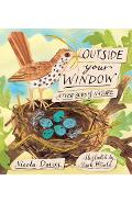 Outside Your Window: A First Book of Nature - Nicola Davies