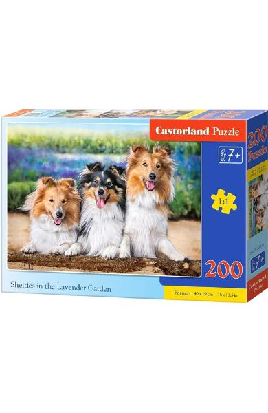 Puzzle 200. Shelties in the Lavender Garden