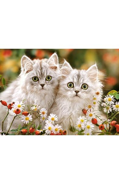 Puzzle 200. Persian Kittens