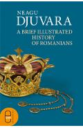 eBook A Brief Illustrated History of Romanians - Neagu Djuvara