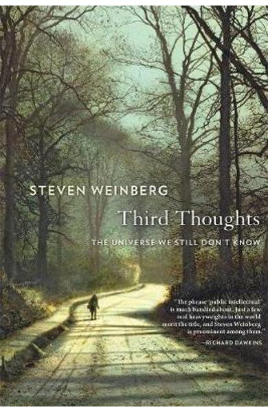 Third Thoughts - Steven Weinberg
