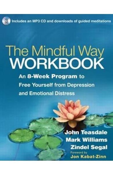 Mindful Way Workbook