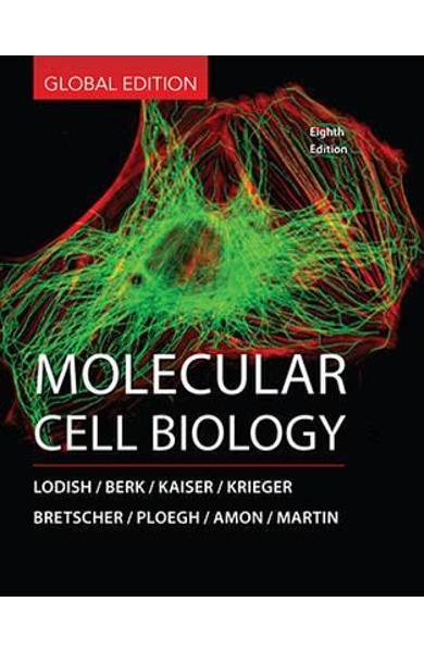 Molecular Cell Biology -