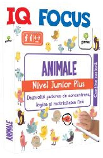 IQ Focus - Animale. Nivel Junior Plus 4-5 ani