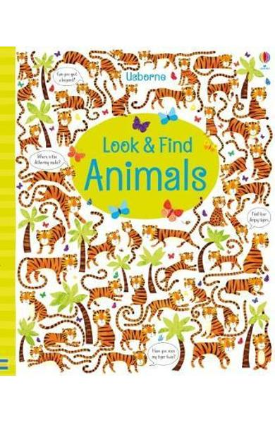 Look and Find Animals