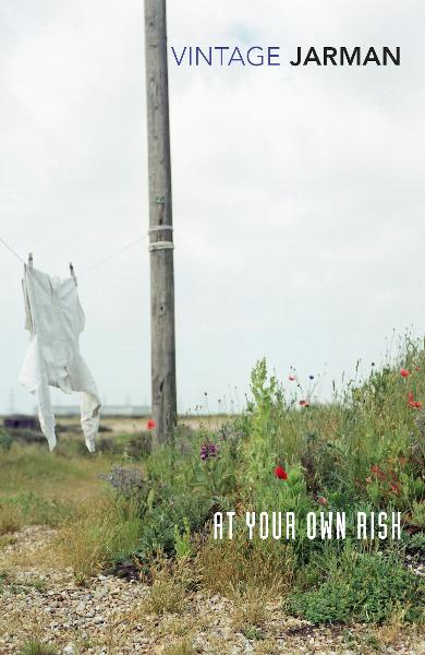 At Your Own Risk - Derek Jarman