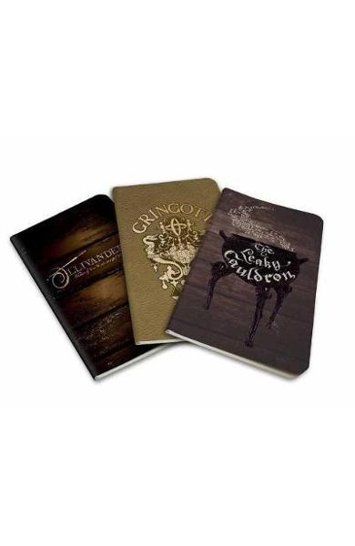 Harry Potter: Diagon Alley Pocket Journal Collection -