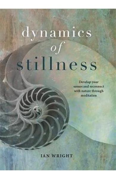 Dynamics of Stillness - Ian Wright