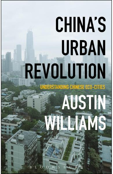 China's Urban Revolution
