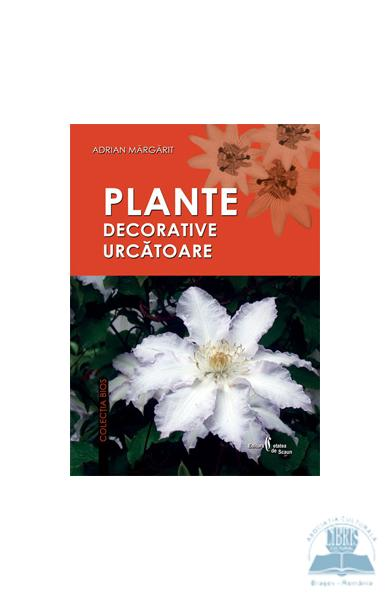 Plante decorative uscatoare - Adrian Margarit