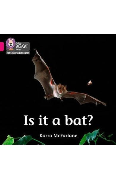 Is it a Bat? - Karra McFarlane