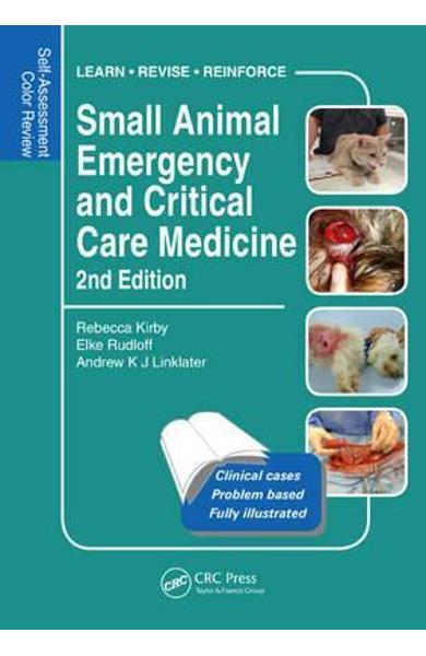 Small Animal Emergency and Critical Care Medicine - Rebecca Kirby