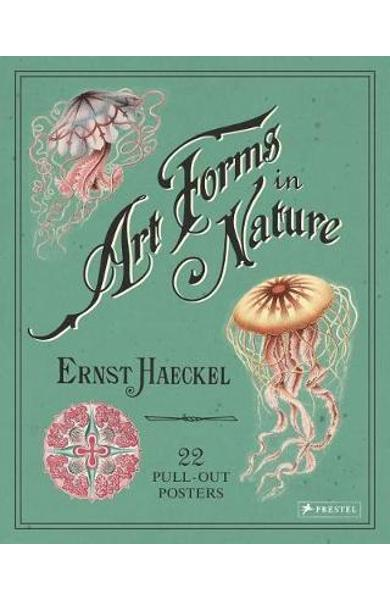 Ernst Haeckel: Art Forms in Nature: 22 Pull-Out Posters - Kira Uthoff