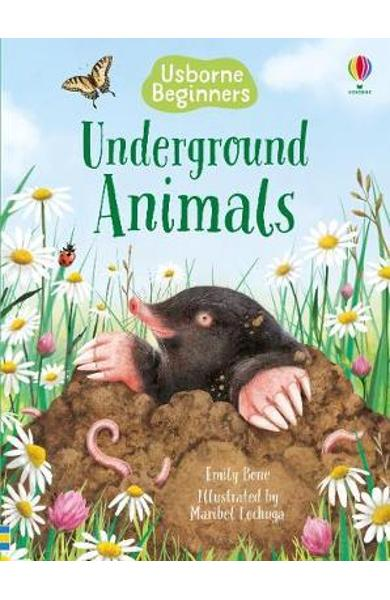 Underground Animals - Emily Bone