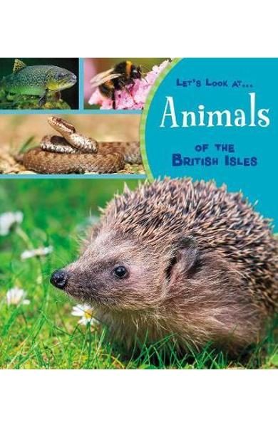Animals of the British Isles - Lucy Beevor