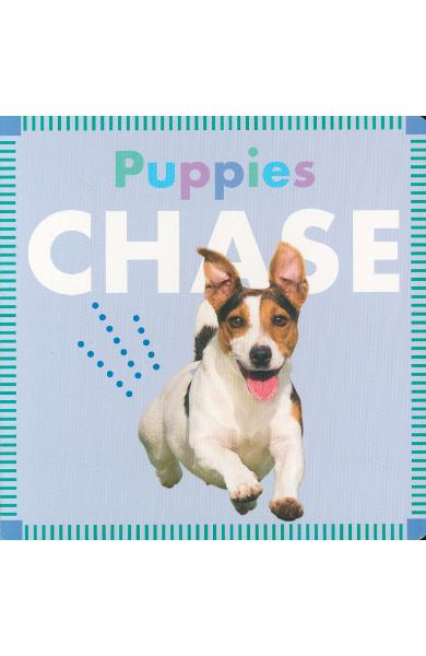 Puppies Chase - Rebecca Glaser