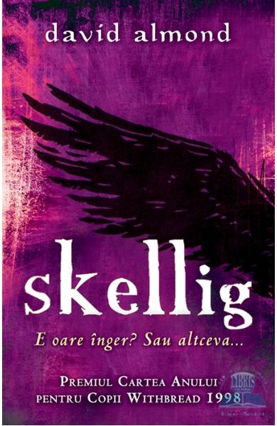 an essay on the book skellig Skellig skellig is portrayed as a mysterious character in the beginning and is hard to understand, but as the book progresses we learn more about him.