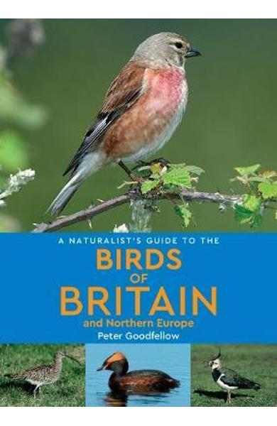 Naturalist's Guide to the Birds of Britain and Northern Euro
