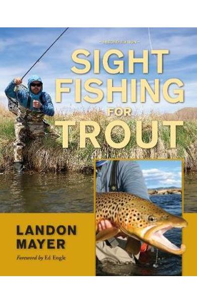 Sight Fishing for Trout - Landon Mayer