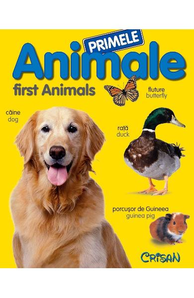 Primele animale. First Animals