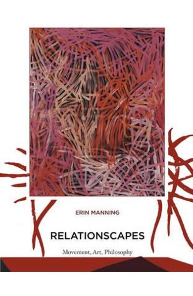 Relationscapes