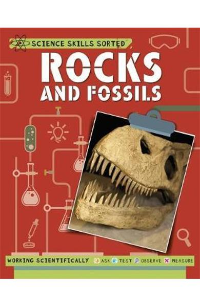 Science Skills Sorted!: Rocks and Fossils - Anna Claybourne