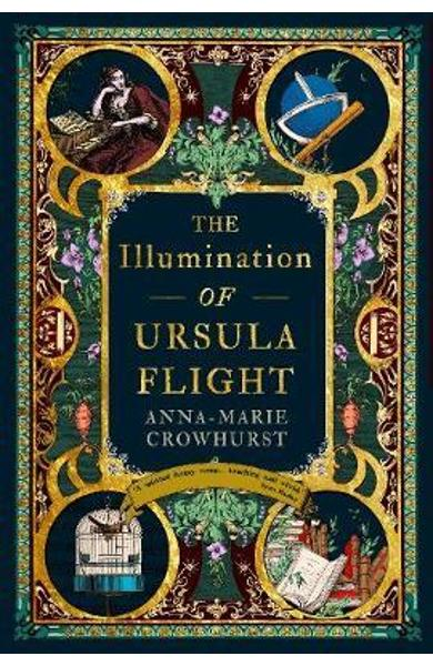 Illumination of Ursula Flight