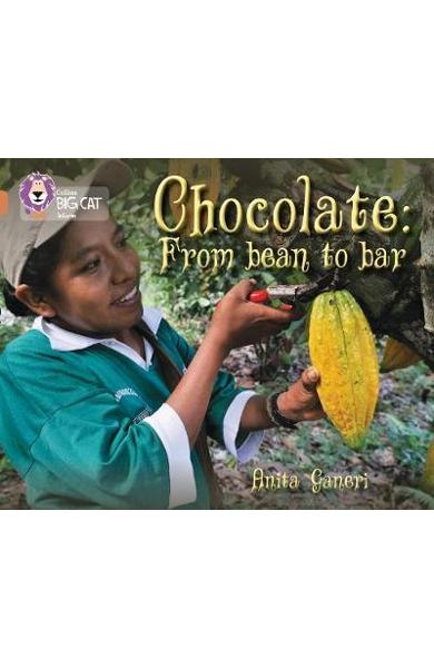 Chocolate: from Bean to Bar