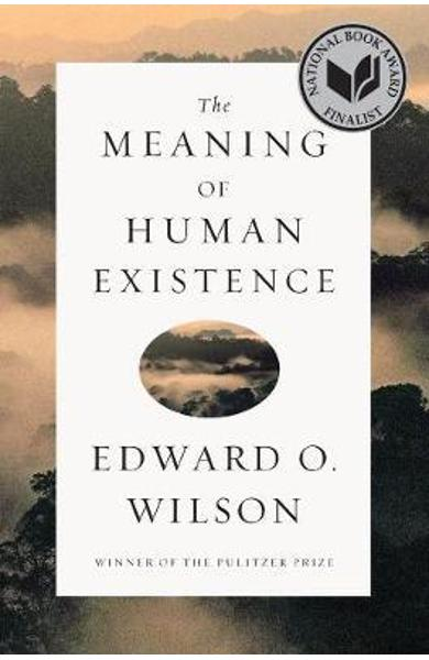 Meaning of Human Existence