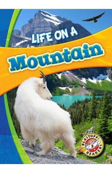 Life on a Mountain - Laura Hamilton Waxman