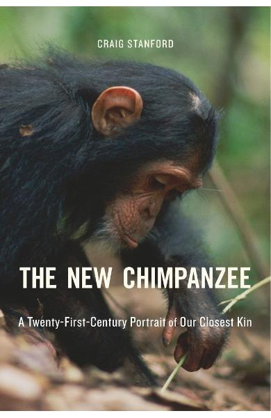 New Chimpanzee
