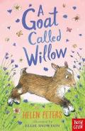 Goat Called Willow