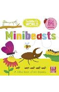 Toddler's World: Minibeasts