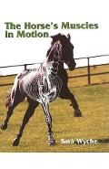 Horse's Muscles in Motion - Sara Wyche