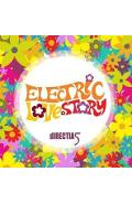 CD Directia 5 - Electric Love Story